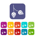 branch of hops icons set vector image vector image