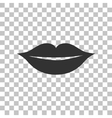 Lips sign Dark gray icon on vector image vector image