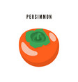 persimmon japanese exotic dessert cartoon fruit vector image