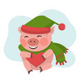 pig hold the red heart in green hat vector image