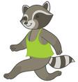 raccoon running in sports t-shirt vector image