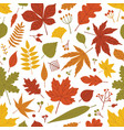 seasonal botanical seamless pattern with autumnal vector image vector image