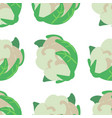 vegetable seamless pattern with cauliflower on a vector image