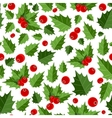Abstract Beauty Christmas Berry Seamless Pattern vector image vector image