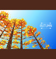 autumn forest background with stylized trees vector image