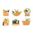 cartoon picnic baskets summer family weekend vector image