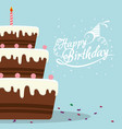 happy birthday cake chocolate confetti card vector image vector image