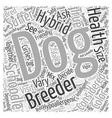 is the schoodle a true hypoallergenic dog dlvy vector image vector image