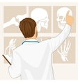male doctor pointing on tomography vector image vector image