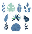 set of flat tropical leaves vector image vector image