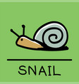 snail hand-drawn style vector image