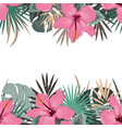 summer border with tropical palm leaves and vector image