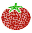 tomato vegetable collage of squares and circles vector image