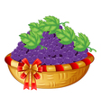 A basket of grapes vector image vector image