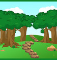 forest scene with trail in the woods vector image