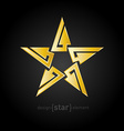 Gold Abstract star with arrows on black background vector image vector image