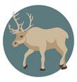 reindeer profile side flat vector image
