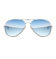 Aviator Glasses isolated on a white background vector image
