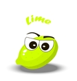 fresh lime and slice vector image