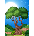 a tree in nature background vector image vector image