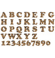 alphabet military brown vector image vector image