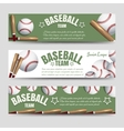 Baseball team banners vector image vector image