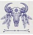 Buffalo skull ball pen sketch vector image