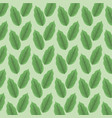 color background pattern green lanceolated leaves vector image vector image