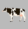 cow flat style profile vector image