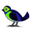 exotic bird vector image vector image