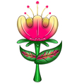 Exotic Flower vector image vector image