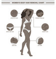 infographic with womens body hair removal chart vector image vector image