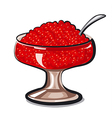 red caviar vector image