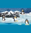 scene with penguins on ice vector image vector image