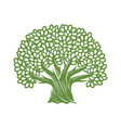 tree symbol decorative oak with leaves vector image