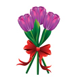 Tulip bouquet with red bow2 vector image vector image