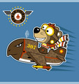 animal pilot cartoon on a fighter plane with air