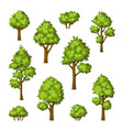collection of different trees and bushes vector image