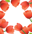 tulips frame vector image vector image