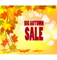 autumn foliage sale banner vector image