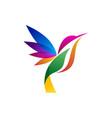 colorful hummingbird logo vector image