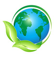 global leaf vector image vector image