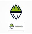 logo combination of a mountain and iceberg vector image vector image