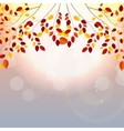 Natural Sunny Autumn Leaves Background vector image