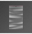 Plastic zipper bag transparent vector image vector image
