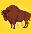 Pop art animal artiodactyl bison cow comic book vector image