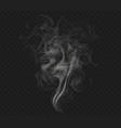 realistic cigarette smoke vector image