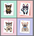 dogs with good mood collection vector image