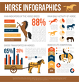 Horse Breeds Infographic Presentation Flat Poster vector image vector image
