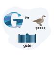 letter g for children alphabet vector image